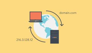 DNS có nhiệm vụ dịch tên miền sang 1 địa chỉ IP gồm có 4 nhóm số