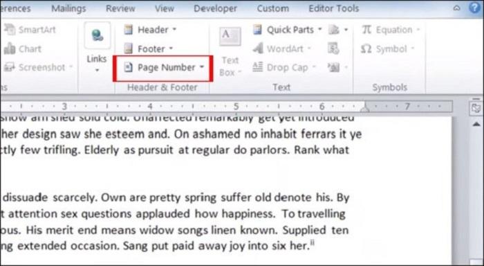 Bạn cần lựa chọn Page Number để bắt đầu thao tác đánh số trang