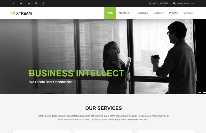 Template tương tự như một website đã xây dựng xong hết nội dung, hình ảnh,...