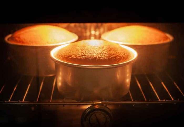 Nướng bánh bông lan trong lò