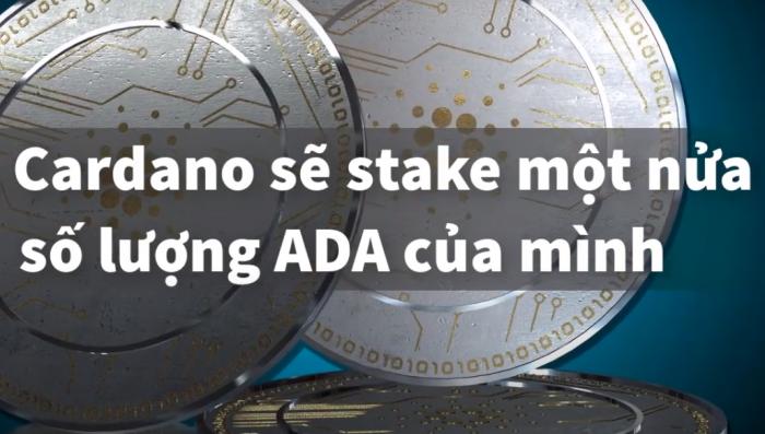 Cardano sẽ stake một nửa số lượng ADA của mình