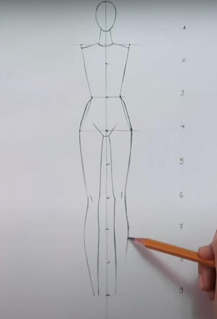 Vẽ từ eo xuống phần thân dưới