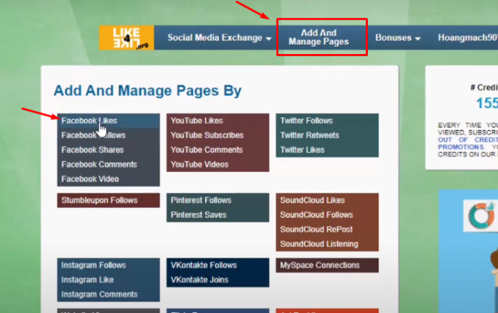 Vào Add And Manage Pages và chọn Facebook likes