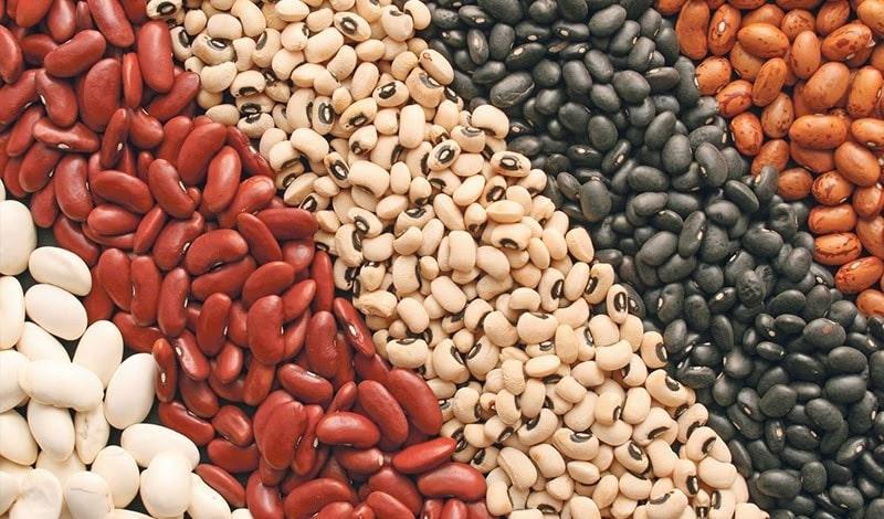 Đậu chứa nhiều protein và nó rất giàu chất xơ.