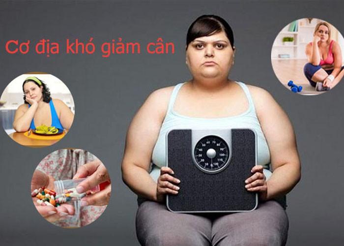Top 03 sản phẩm an toàn dành cho người có cơ địa khó giảm cân
