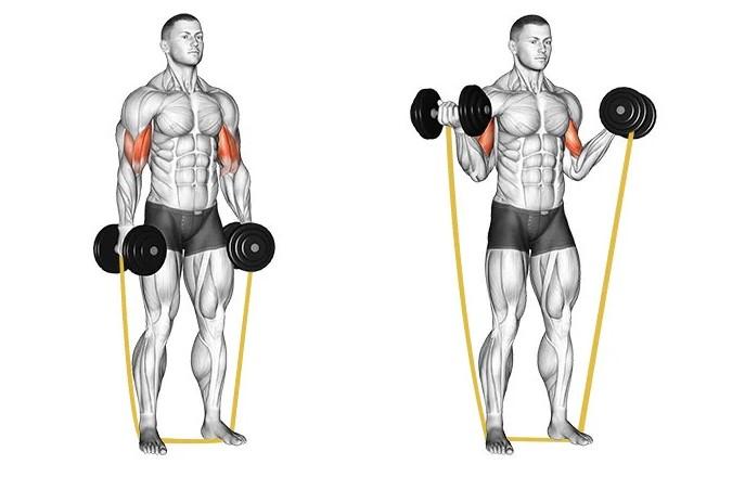 Thử thách 30 phút tập luyện cơ bắp với các bài tập HIIT