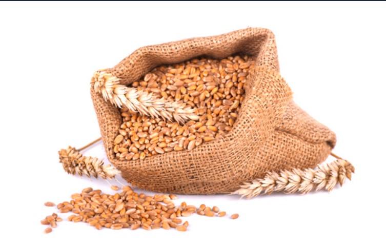 Sử dụng các loại ngũ cốc nguyên hạt