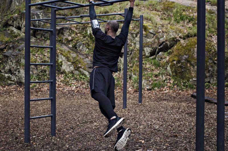 Chú khỉ đu cành cây(Monkey Bars)