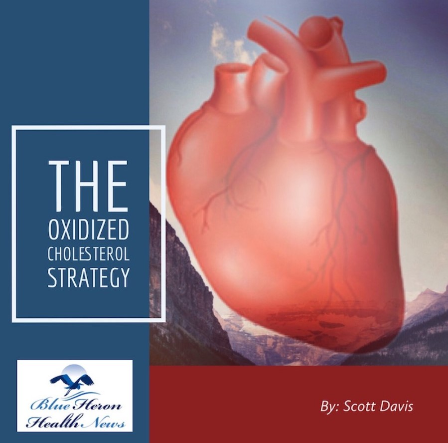 Oxidized Cholesterol Strategy Review - Why It's Necessary