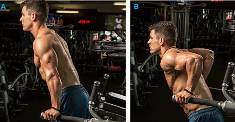 Nâng người với cơ tay sau (Triceps Dip)